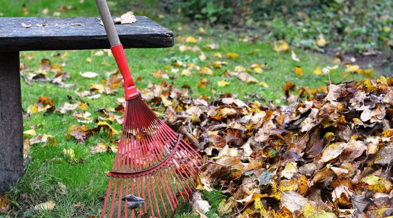 fall-tools-for-cleaning-up-leaves